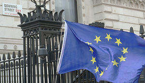European%20flag%20at%20Downing%20Street_edited.jpg