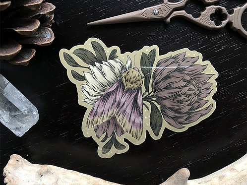 Primrose Moth sticker
