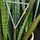 Thumbnail: Triangle Stick