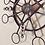 Thumbnail: Bellatrix 1.64
