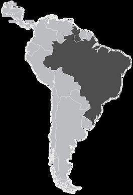 Brazil+Gyuana