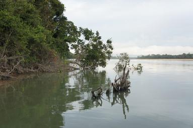 rio Tapajos
