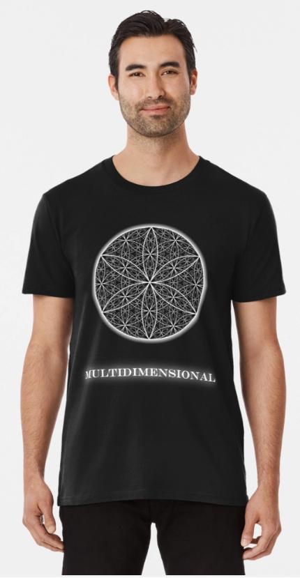 MultiDimensional 2.PNG
