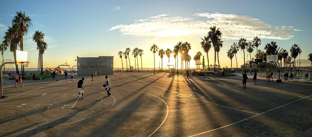 basketball, rebound, bears, bulls