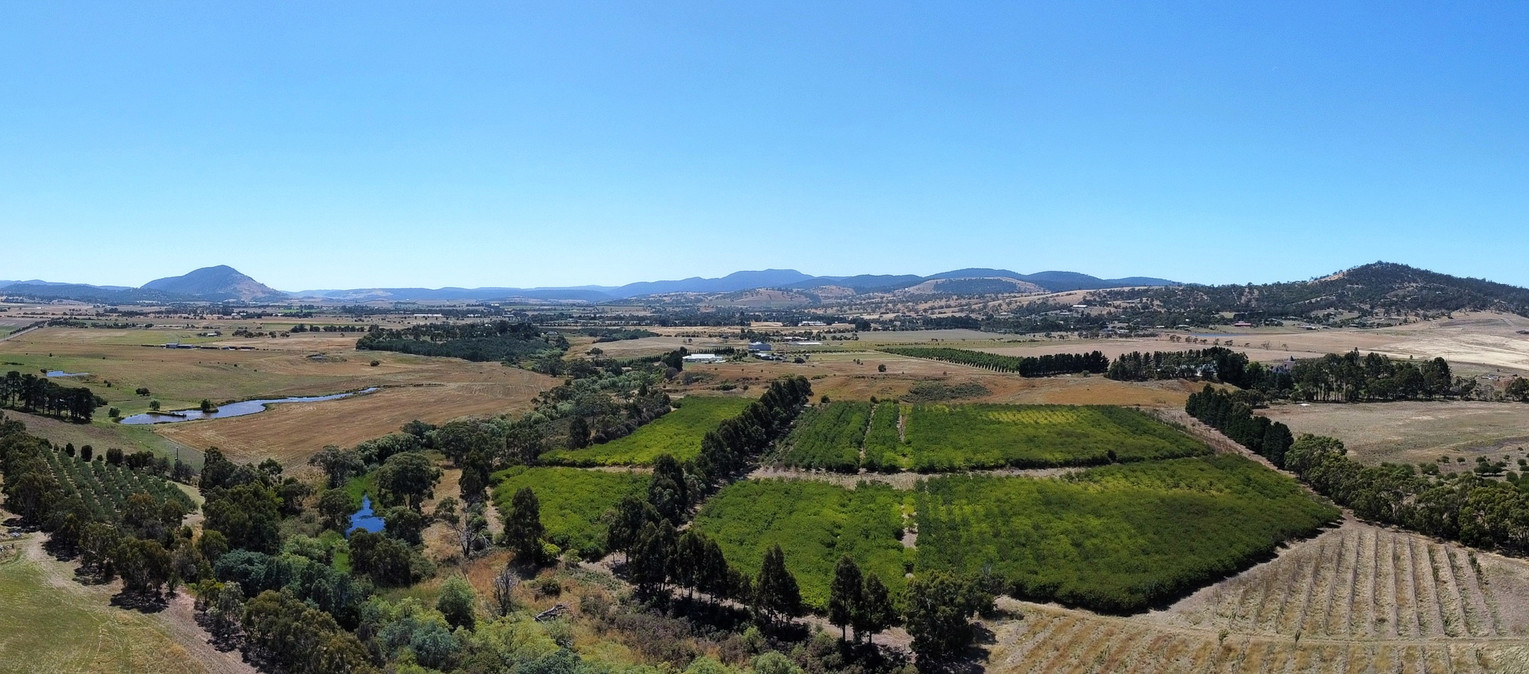 Panoramic view of Richmond, Tasmania