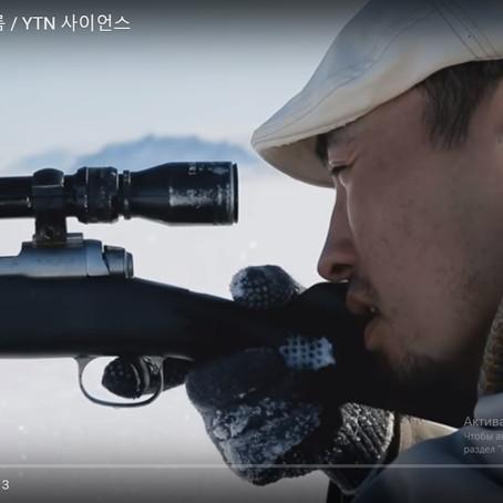 "The Korean documentary ""The Arctic"""