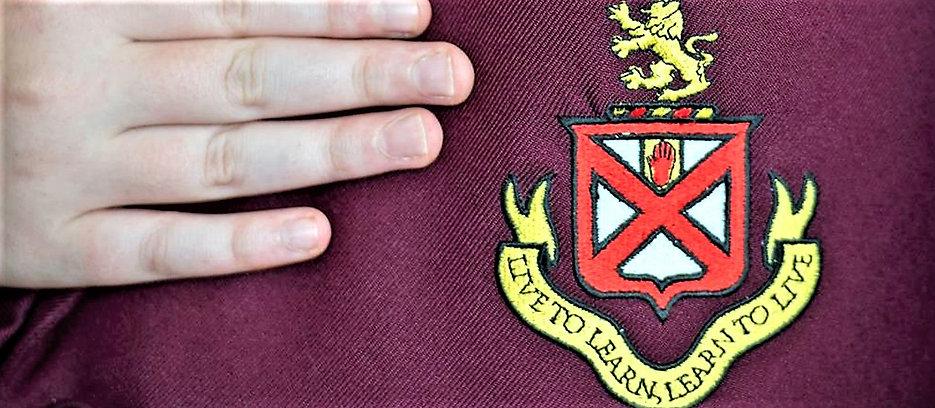 Picture showing school badge.jpg