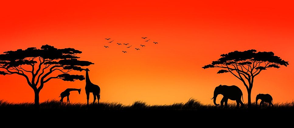 south_africa-01.jpg