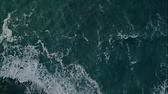 Screen Shot 2020-12-28 at 1.52.21 AM.png