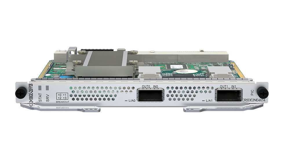 Placa NE8000 2x100GE