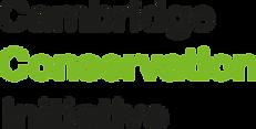 CCI-logo-300x152.png
