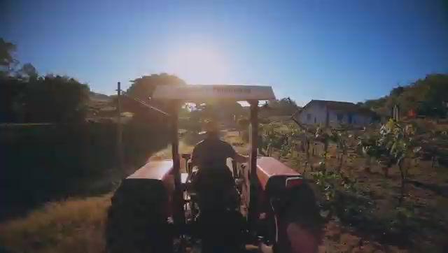Coronavírus e o Produtor Rural