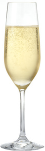 Bali Rent Champagne Glass