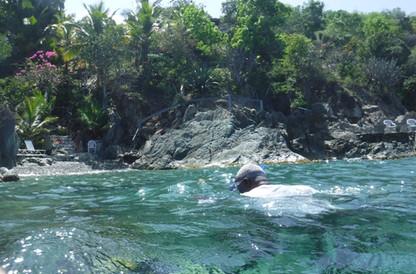 Excllent Snorkelng