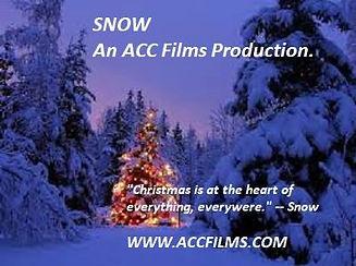 Christmas Tree - Snow.jpg