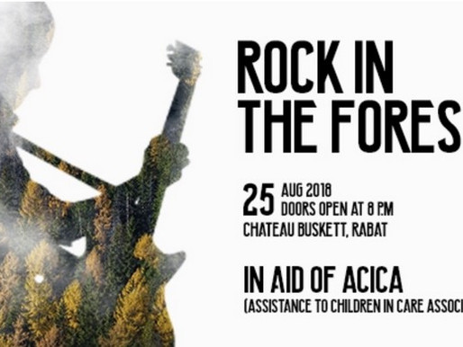 ROCK IN THE FOREST IN ITS 7TH YEAR