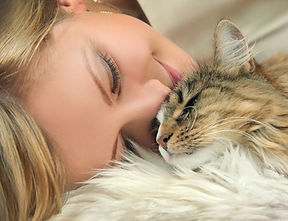 Что такое профилактика МКБ у кошек?