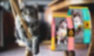 Дети с собакой