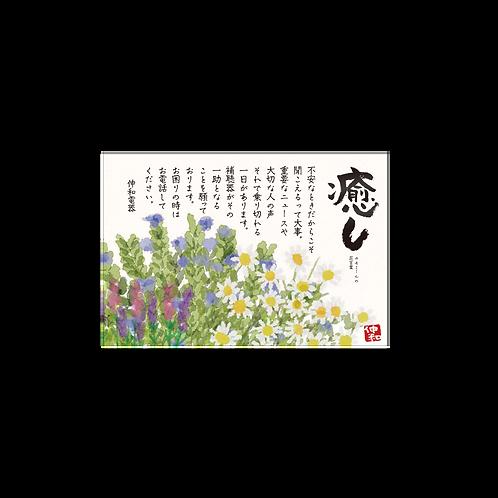 補聴器お手紙DM_見込客向け/ハガキサイズ両面カラー/100枚