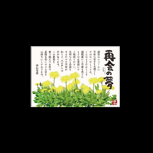 補聴器お手紙DM_ご購入客向け/ハガキサイズ 両面カラー/100枚