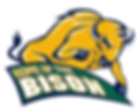 Home of the Bison Logo