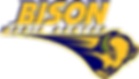 Bison Media Center Logo
