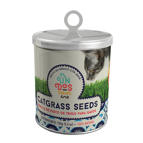 Catgrass Seeds Semillas de pasto de trigo para gatos