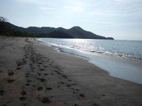 Matapalo Beach, Guanacaste