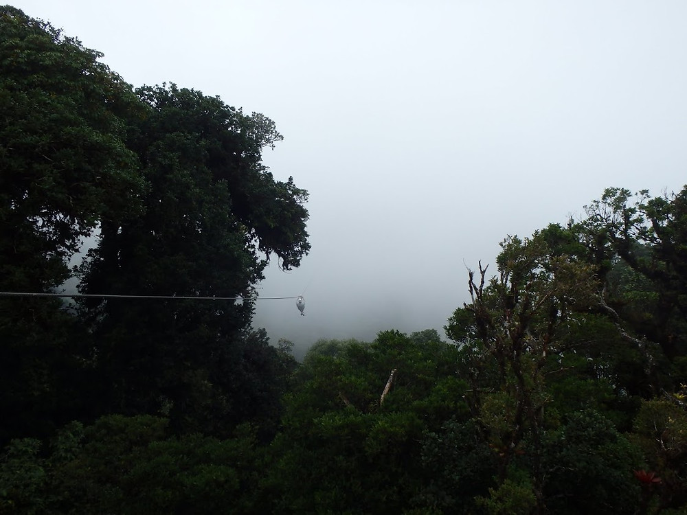 Zip-lining into clouds in Monteverde, Costa Rica