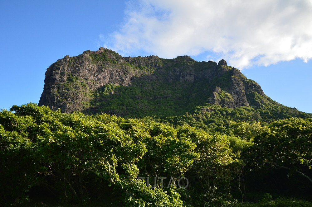 View from the base of Le Morne Brabant Mountain, Mauritius