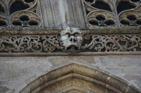 Gargoyles on St. Stephen's Cathedral, Vienna, Austria