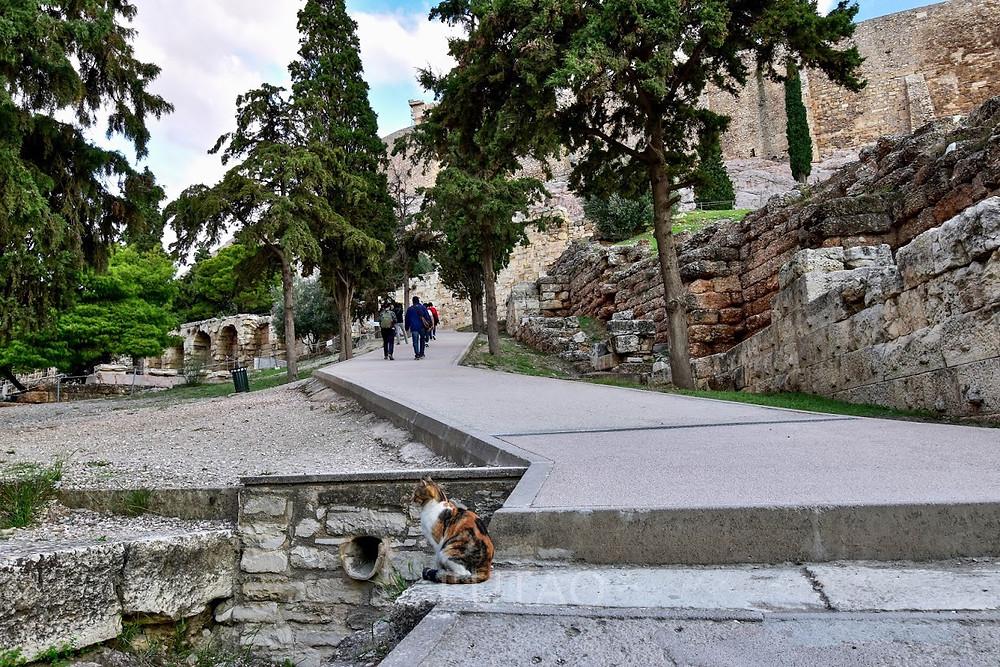 Climbing up the Acropolis, Athens, Greece