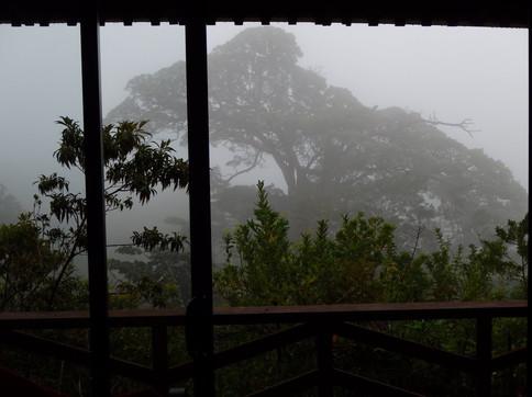 Cabinas Capulin Balcony, Monteverde, Guanacaste
