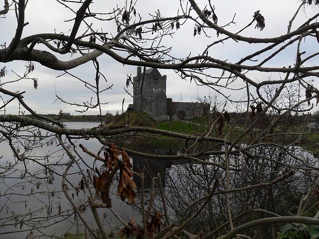 Castle behind vines, Ireland