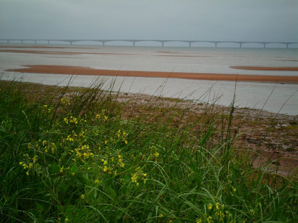 View of Confederation Bridge from Red Beach, PEI, Canada