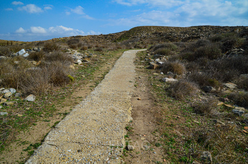 The path to the Temple of Isis, Delos, Greece