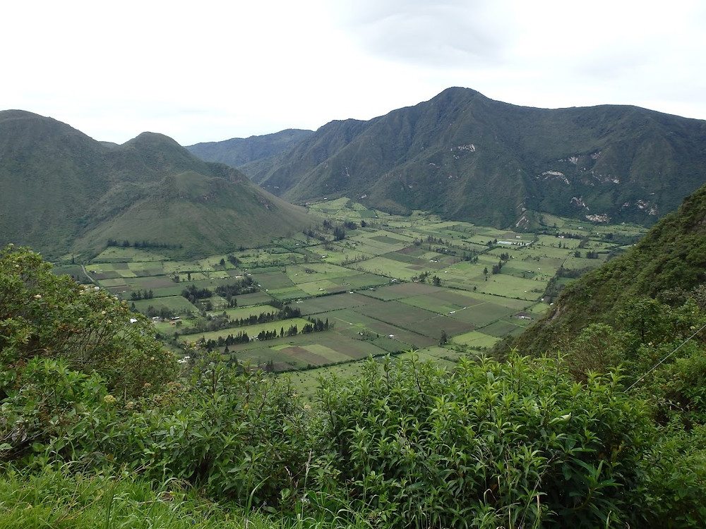 Looking down into the Pululahua Volcano crater, Quito