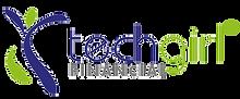 techgirl-financial-logo.png