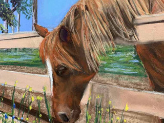 Orange Park Acres Horse