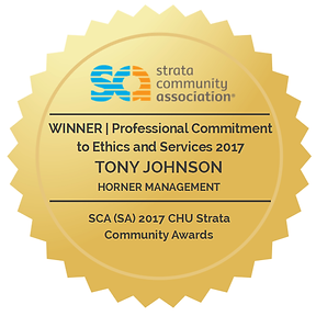2017 Winner - Professional Commitment to