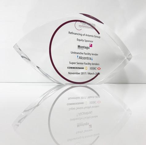 Eye Shaped Corporate Award