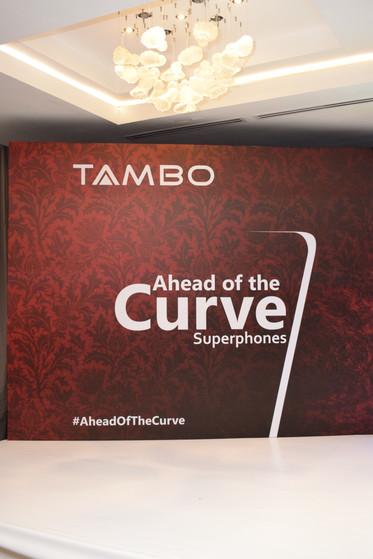 Tambo 29
