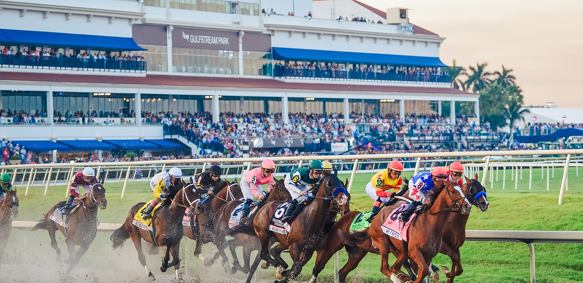PEGASUS WORLD CUP CHAMPIONSHIP INVITATIONAL SERIES RETURNS