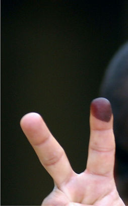Election Icon 1.jpeg