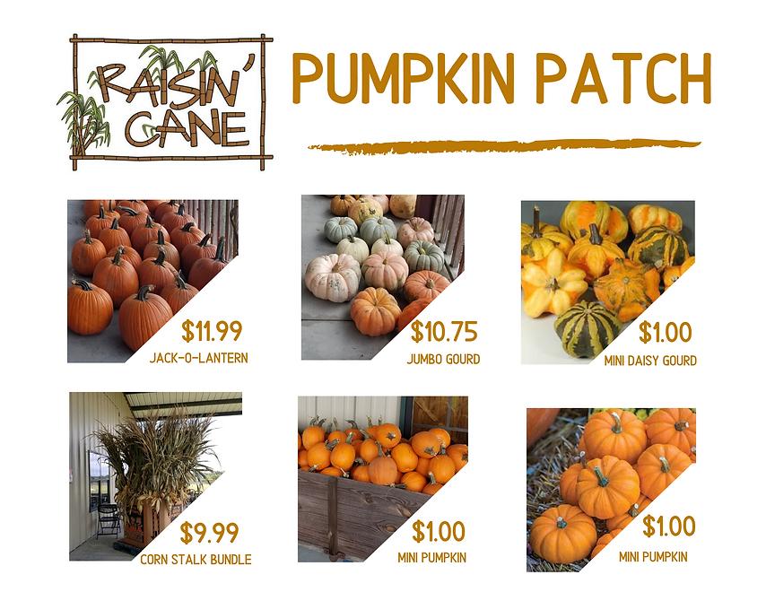 Pumpkin Patch (1).png