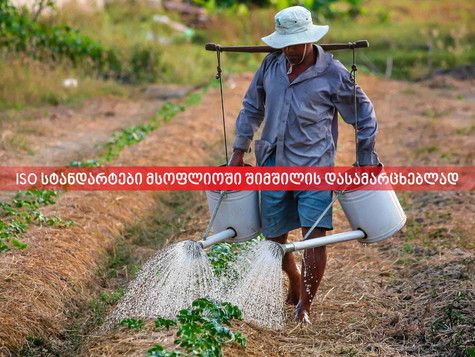 ISO სტანდარტები მსოფლიოში შიმშილის დასამარცხებლად