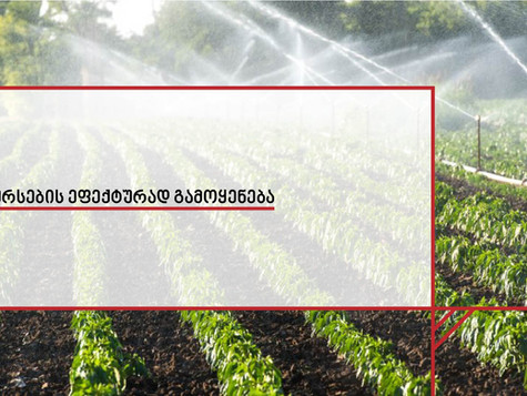 ISO 16075 სერიის სტანდარტები ხარჯთ-ეფექტური ირიგაციის სისტემებისთვის