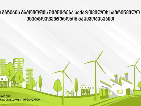 ახალი კანონი ენერგოეფექტურობის შესახებ და UNIDO-ს ხელშეწყობა