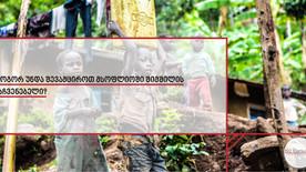 ISO სტანდარტები მსოფლიოში შიმშილის მაჩვენებელის შესამცირებლად