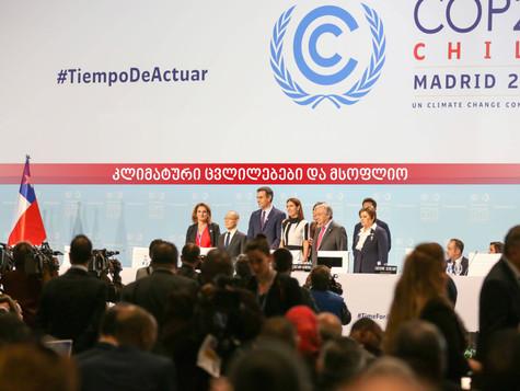 UN - კონფერენცია კლიმატური ცვილელების თემაზე